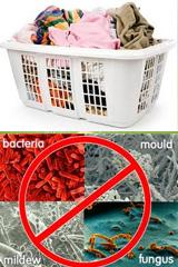 Средство нейтрализует бактерии в т.ч. молочницу (кандида) и используется для обеззараживания нижнего и постельного белья. Интимная гигиена женщины и мужчины.